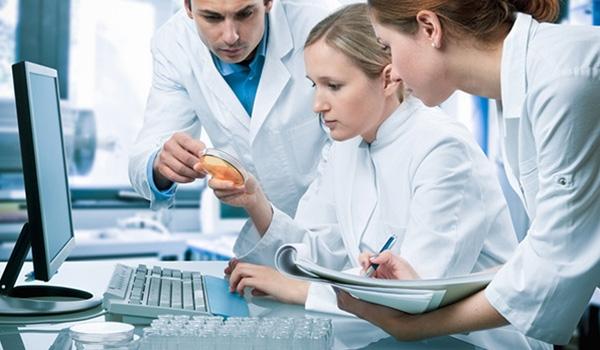 Протоколы узи мочевого пузыря и предстательной железы